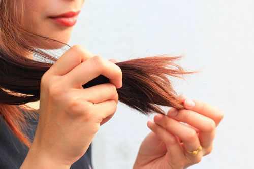 какое масло для секущихся кончиков волос лучше