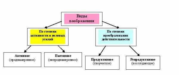 Классификация видов воображения