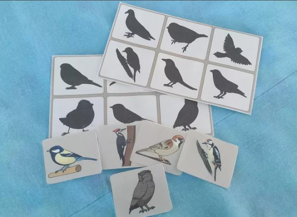 Лото «Птицы»