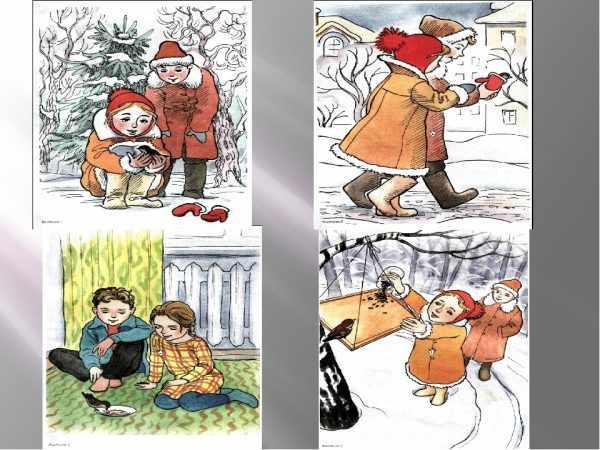 Как помочь птицам зимой: сюжетные картинки