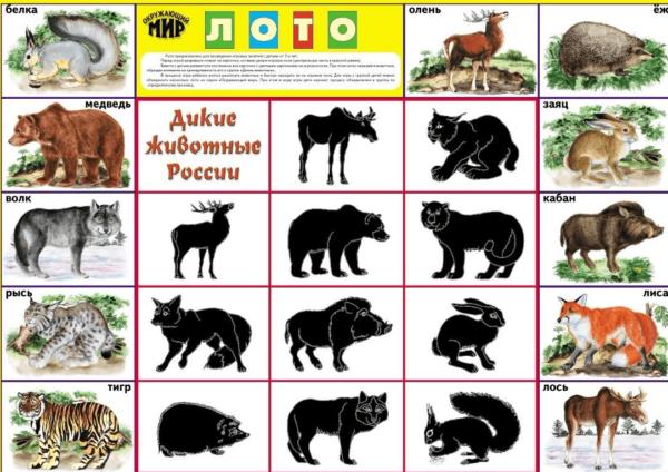 Усложнённый вариант игры лото, предназначенный для старших дошкольников