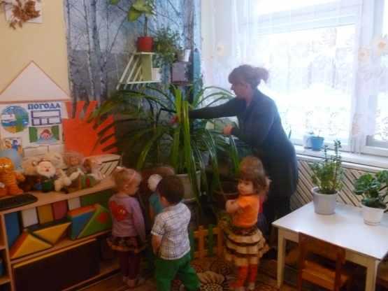 Воспитательница показывает детям листья стоящего в углу цветка д