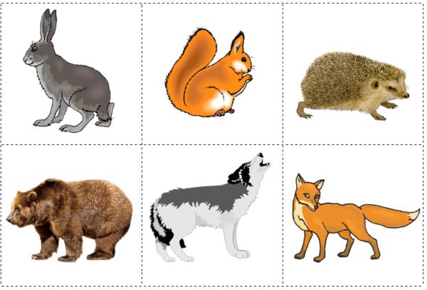 Картинки с изображениями животных