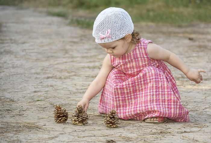 Маленькая девочка раскладывает шишки