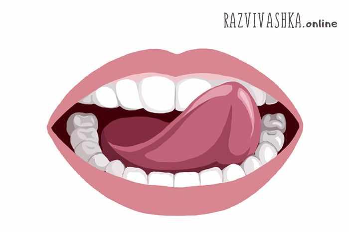 Артикуляционная сказка «Язычок делает ремонт» протираем зубы